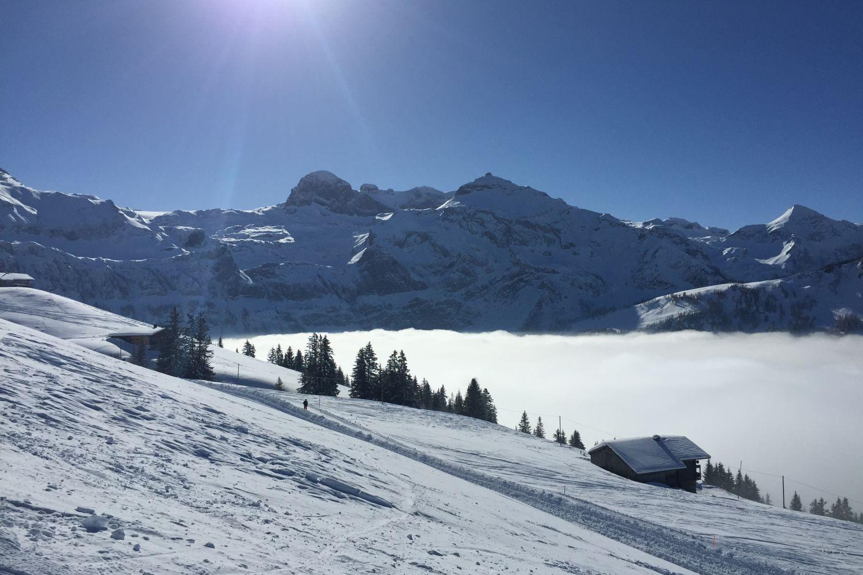 Skilandschaft