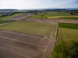 Erosion auf landwirtschaftlicher Fläche Schweiz