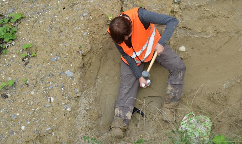 Entnahme einer Sandsteinprobe in einem Bodenaufschluss