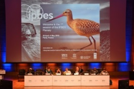plenary session IPBES 2019