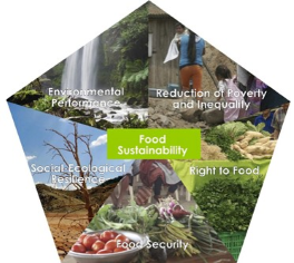 Schema Food Sustainablity